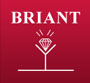 logo bijouterie briant